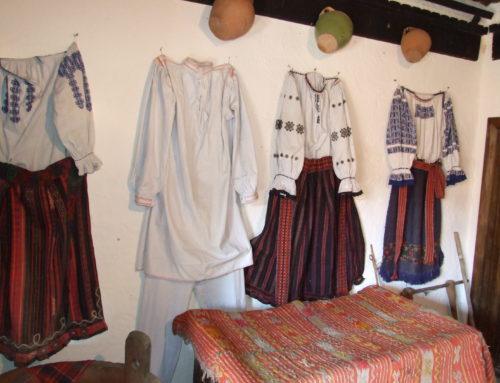 Muzeul satului Dimitrie Gusti Dragus